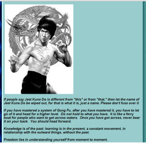 Bruce Lee_Jeet Kune Do is Just a Name