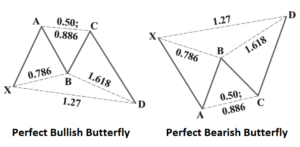 Perfect Butterfly
